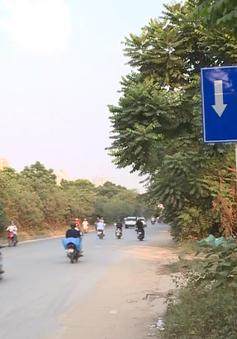 Đầu tư cải tạo đường gom Đại lộ Thăng Long