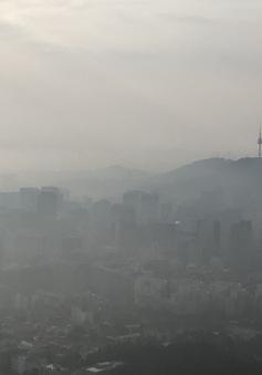 Hàn Quốc triển khai các biện pháp hạn chế bụi mịn tại một số đô thị