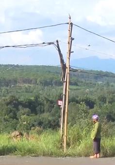 Người dân Đắk Nông sử dụng lưới điện tự kéo gây mất an toàn