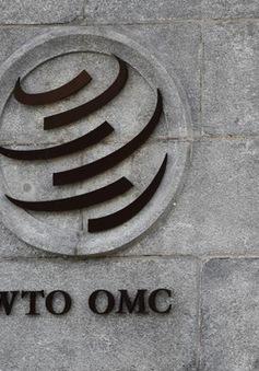 """Hàn Quốc từ bỏ vị thế """"quốc gia đang phát triển"""" tại WTO"""