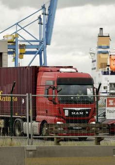 Châu Âu nhập cuộc điều tra vụ 39 thi thể trong container