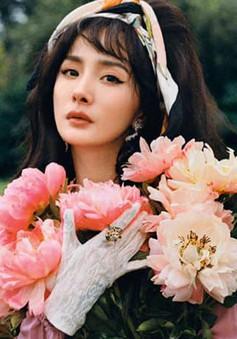 Ảnh mới của Dương Mịch: Cổ điển và thời trang