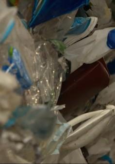 Ấn Độ đặt mục tiêu loại bỏ đồ nhựa dùng một lần vào năm 2022