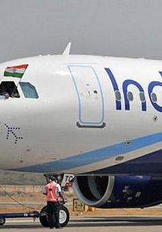 Hãng hàng không giá rẻ Ấn Độ đặt mua 300 máy bay của Airbus