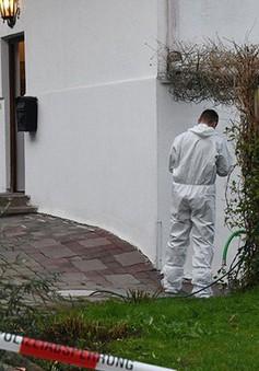 Áo: Bắt đối tượng giết 5 người ở khu nghỉ mát