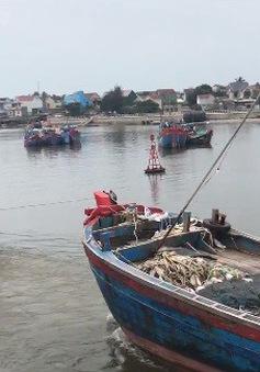 Nhiều tàu cá không được đăng kiểm