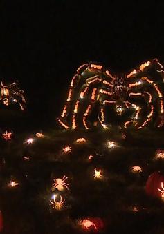 Đặc sắc lễ hội thắp đèn bí ngô lớn nhất tại Mỹ dịp Halloween