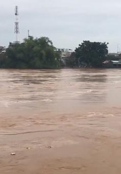 Cuộc sống của người dân Quảng Ngãi đảo lộn do mưa lũ