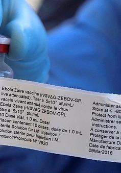 WHO đẩy nhanh quy trình cấp phép vaccine Ebola đầu tiên