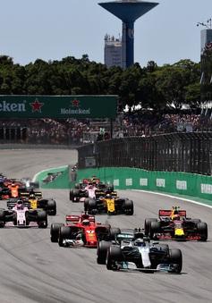 Tìm hiểu về trường đua Interlagos - nơi diễn ra GP Brazil 2019