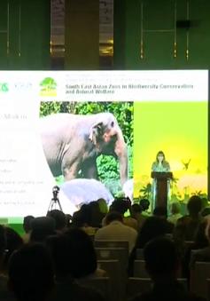 Hàng trăm chuyên gia tham dự Hội nghị Hiệp hội Vườn thú Đông Nam Á