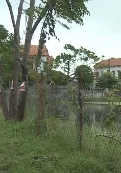 Người dân với nỗi lo ô nhiễm nước thải bệnh viện Hữu nghị Việt Nam - Cu Ba Đồng Hới