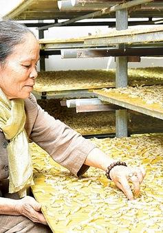 Trải nghiệm di sản Hà Nội với chuỗi sự kiện văn hóa Tiếng Tơ