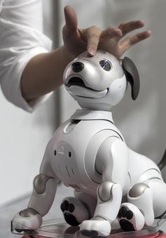 Sony lấn sân sang lĩnh vực ẩm thực với AI và robot nấu ăn