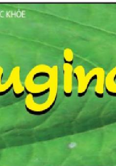 Thu hồi thực phẩm bảo vệ sức khỏe Euginca và Eurica Forte