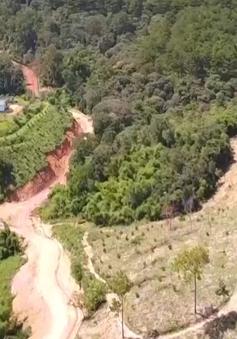 Phá rừng phân lô, biến rừng thành khu du lịch nghỉ dưỡng