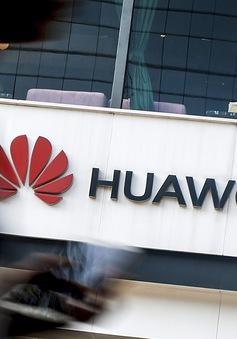 Mỹ hối thúc Canada không sử dụng công nghệ của Huawei