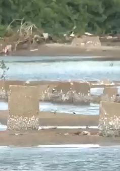 Cảnh báo tình trạng xây dựng lấn chiếm luồng lạch gây nguy hiểm tàu cá
