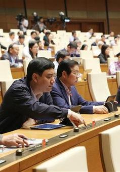 Hôm nay (25/11), Quốc hội bỏ phiếu bầu Chủ nhiệm Ủy ban Pháp luật