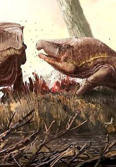 Loài rồng 250 triệu năm tuổi với cái đầu khổng lồ kỳ lạ ở Nga