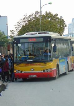 Hà Nội: Xây, lắp mới 600 nhà chờ xe bus đạt tiêu chuẩn châu Âu