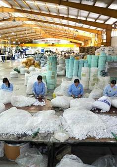 Tháng 11, chỉ số sản xuất toàn ngành công nghiệp có dấu hiệu tăng chậm lại