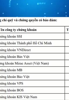 """Sự """"lên ngôi"""" của công ty chứng khoán Hàn Quốc tại Việt Nam"""