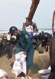 Quảng Nam: Hội An khẩn cấp gia cố kè biển Cửa Đại bị sụt lún sau bão số 5