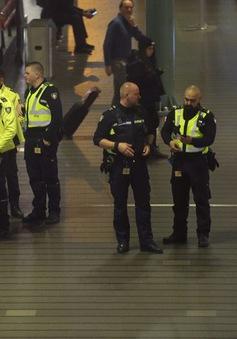 Sân bay Hà Lan náo loạn vì báo động nhầm