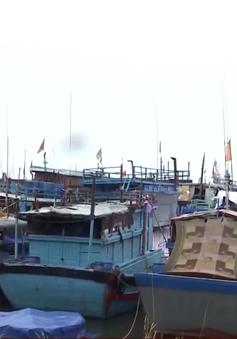 Ban chỉ đạo trung ương về phòng chống thiên tai kiểm tra công tác phòng chống bão số 6 tại Quảng Ngãi