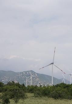 Ninh Thuận thêm dự án điện gió phát điện thương mại