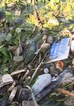 Kênh rạch TP.HCM ngập rác thải nhựa