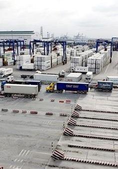 TP.HCM đón TEU thứ 5 triệu qua Tân Cảng - Cát Lái