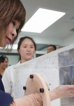 Singapore ngăn chặn dịch sốt xuất huyết lan rộng