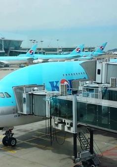 Các hãng hàng không Hàn Quốc sẽ không thu phụ phí nhiên liệu trên các tuyến bay quốc tế