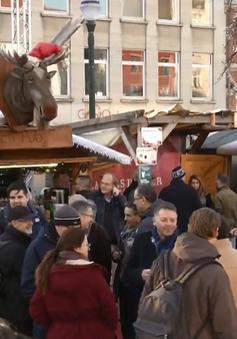 Thăm khu chợ Giáng sinh tại Bruxelles, Bỉ