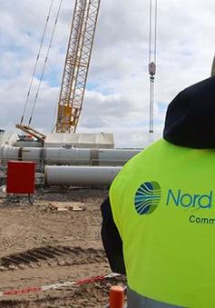 Nga có thể tự lắp đặt dự án Dòng chảy phương Bắc 2 bất chấp lệnh cấm vận
