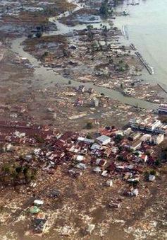 15 năm thảm họa sóng thần Ấn Độ Dương