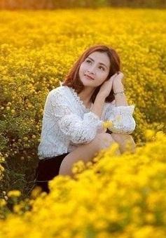 Những mùa hoa đặc biệt giữa trời đông hút du khách  ở Ninh Bình