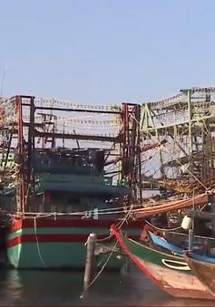 Quảng Nam cho vay 22,5 tỷ đóng mới 15 tàu cá công suất lớn