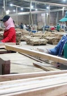 Xuất khẩu gỗ đã vượt kỷ lục năm 2018
