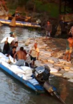 Thu giữ 1.000 tấn đường cát lậu tại An Giang