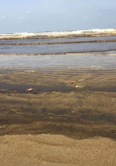 Nước biển Khe Hai đổi màu lạ chưa rõ nguyên nhân