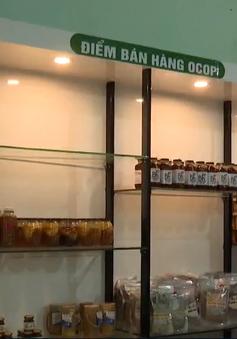 Phiên chợ sâm Ngọc linh cuối năm đạt doanh thu trên 5,7 tỷ đồng