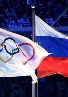 Thể thao Nga bị cấm tham gia các giải Olympic và World Cup trong 4 năm tới