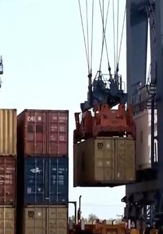 Bình Dương: Thông quan hơn 140 container phế liệu tồn đọng