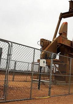 OPEC hạ mạnh sản lượng, giá dầu tăng mạnh