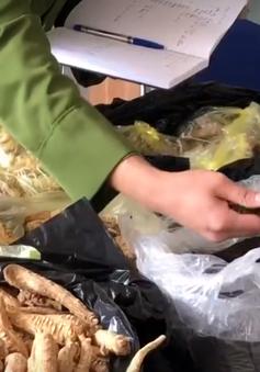 Bày bán tràn lan thuốc nam không rõ nguồn gốc tại khu di tích Tây Thiên