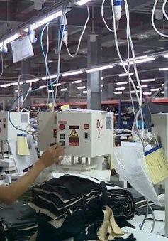Ngày càng nhiều doanh nghiệp kiều bào đầu tư tại Việt Nam