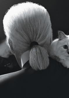 Choáng chưa! Con mèo của Karl Lagerfeld có thể sẽ được thừa kế 150 triệu bảng Anh